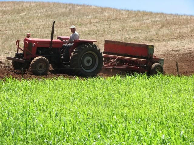 Hoje é comemorado o dia do Agricultor