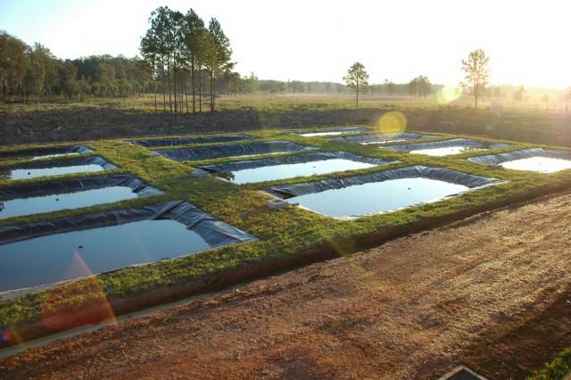 Agricultores do Alto Vale tem sucesso de renda com a Piscicultura