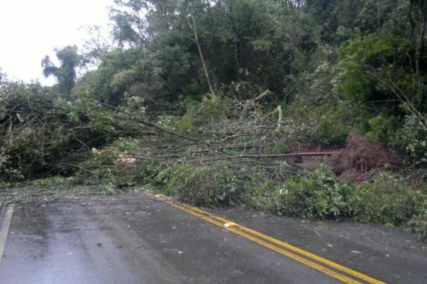 Treze rodovias estão interditadas em Santa Catarina por causa das chuvas