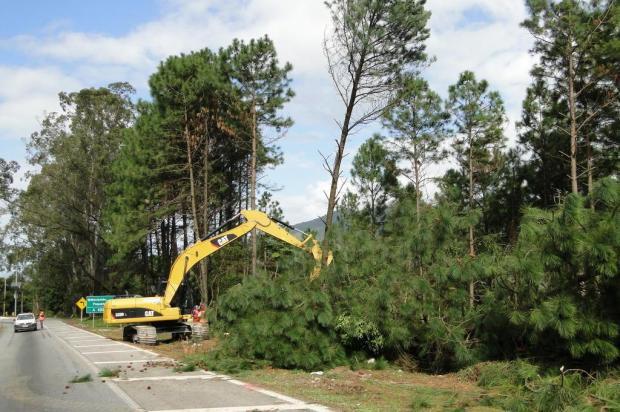 Obras bloqueiam BR-101 a partir das 12h no Morro dos Cavalos, em Palhoça