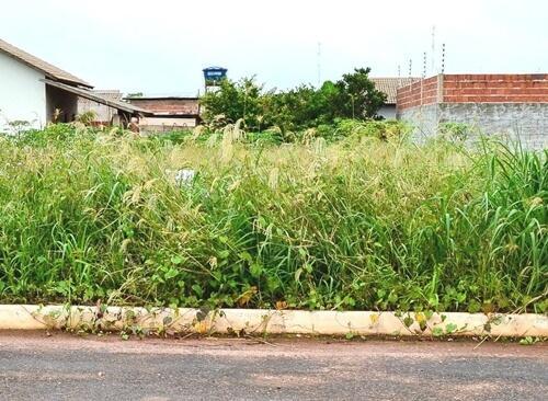 Administração de Ituporanga pede cooperação dos moradores para fazer a limpeza de terrenos baldios no município