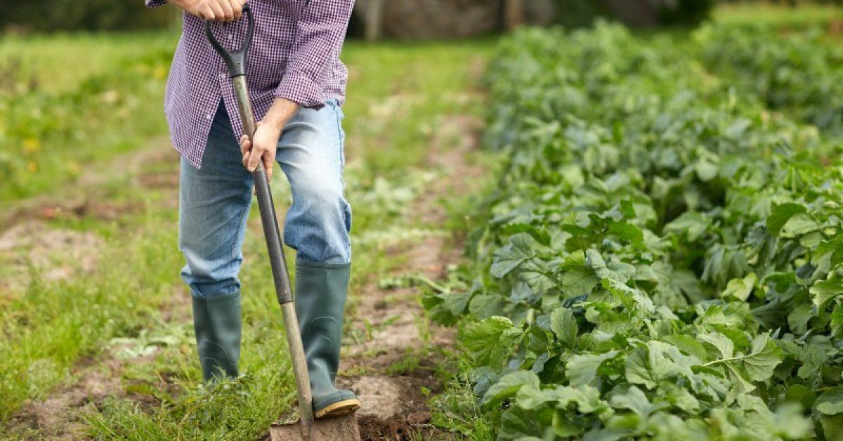 Agricultores e lideranças do Alto Vale se organizam para discutir mão de obra trabalhista