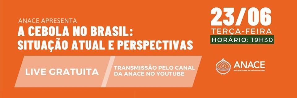 Anace vai promover Live para debater safra de cebola no Brasil