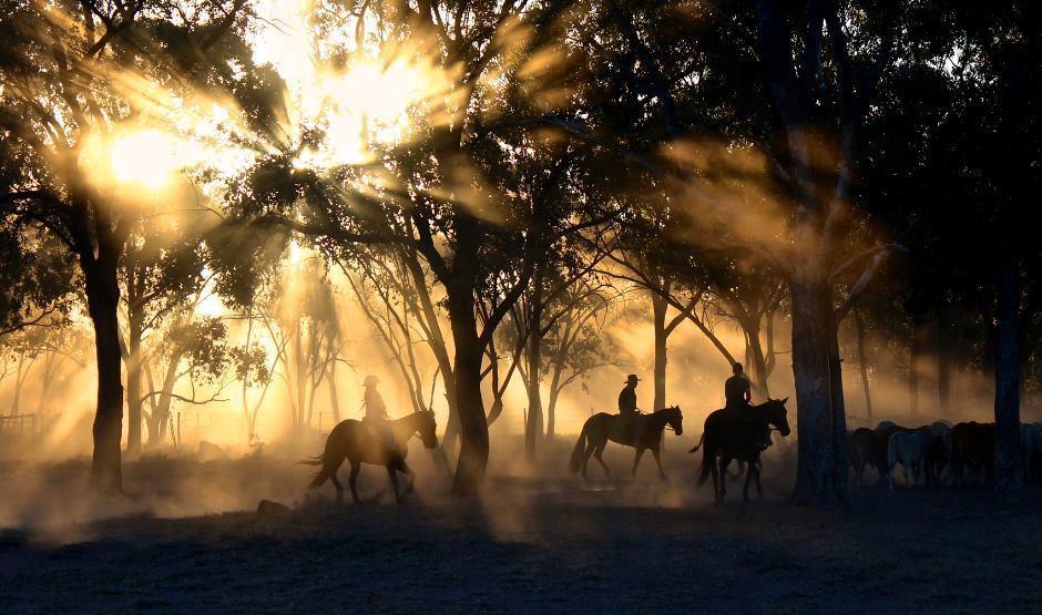 Cavalgada Amigos da APAE será neste sábado em Ituporanga