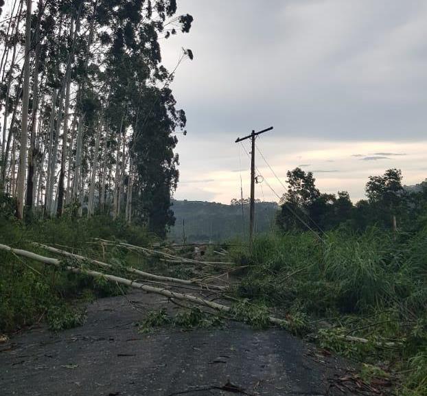 Cidade de Atalanta foi atingida por uma microexplosão, diz meteorologista da Epagri