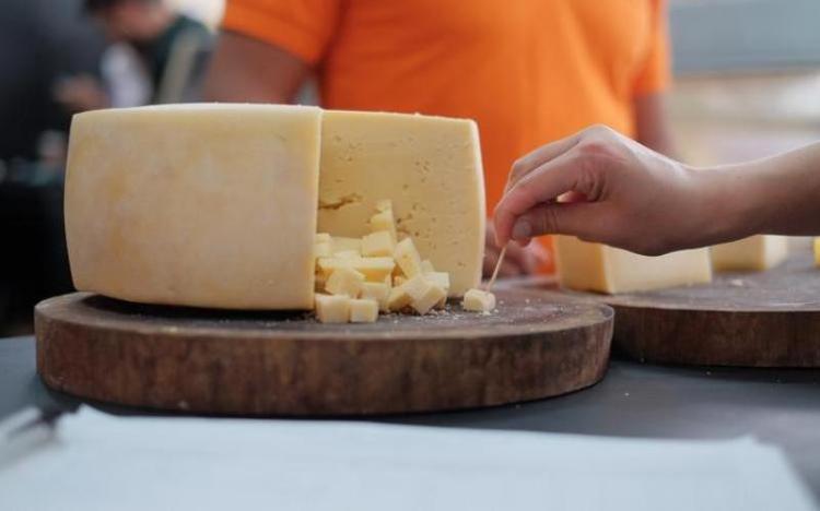 Decreto regulamenta produção de queijos artesanais em Santa Catarina
