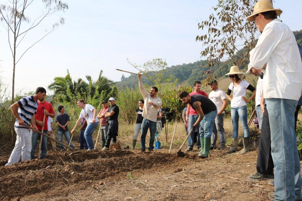 Agricultura Sintrópica, destaque em novela da rede globo é tema de capacitação no Alto Vale