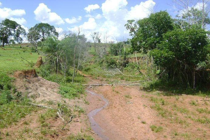 Alto Vale possui cinco mil hectares com áreas degradadas e que precisam ser restauradas
