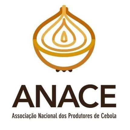 Anace pede ajuda financeira dos produtores de cebola para financiar gastos com a associação