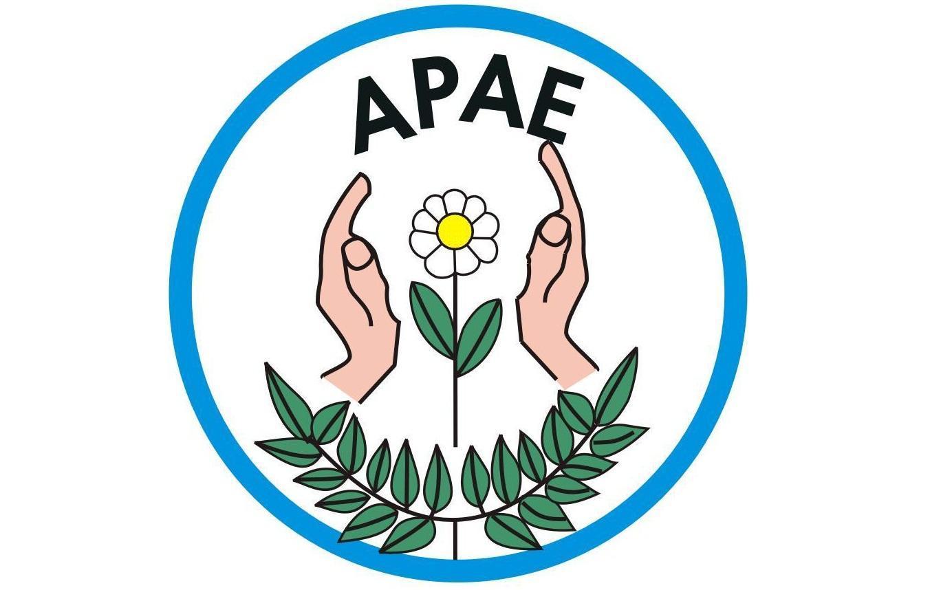 APAE de Ituporanga é classificada para Feira Nacional de Matemática