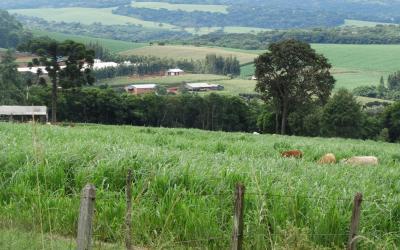 Apremavi vai oferecer curso de Planejamento Ambiental de Propriedades e Paisagens