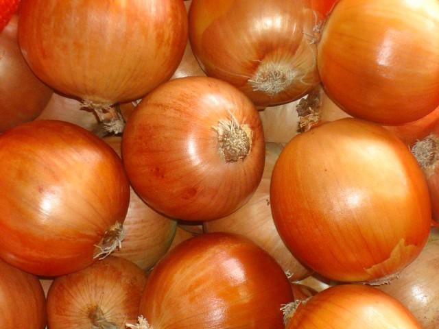 Associação de Compradores de cebola busca padronizar classificação do produto para a comercialização nesta safra