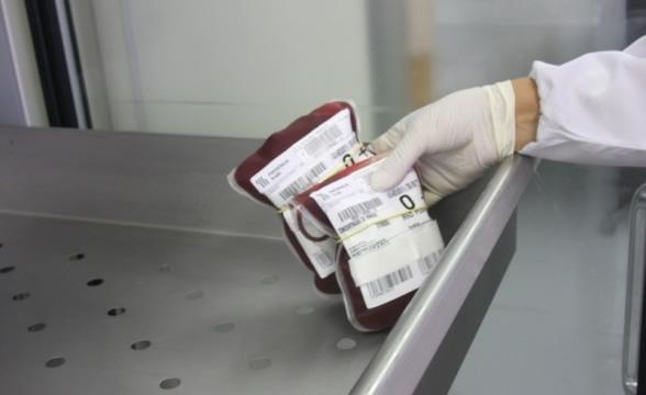 Baixo estoque de sangue pode comprometer cirurgias eletivas em Santa Catarina