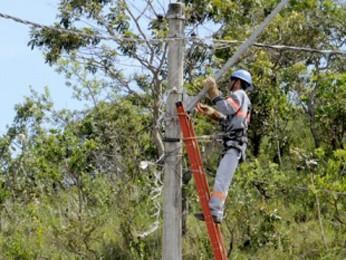 Celesc solicita apoio de agricultores para fazer limpeza da rede de energia na Região da Cebola