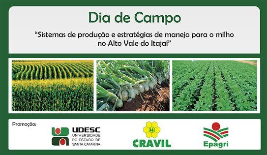 Dia de Campo apresentará combinações de sistemas de plantio