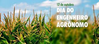 Dia do Engenheiro Agrônomo é comemorado nesta quarta-feira, 12