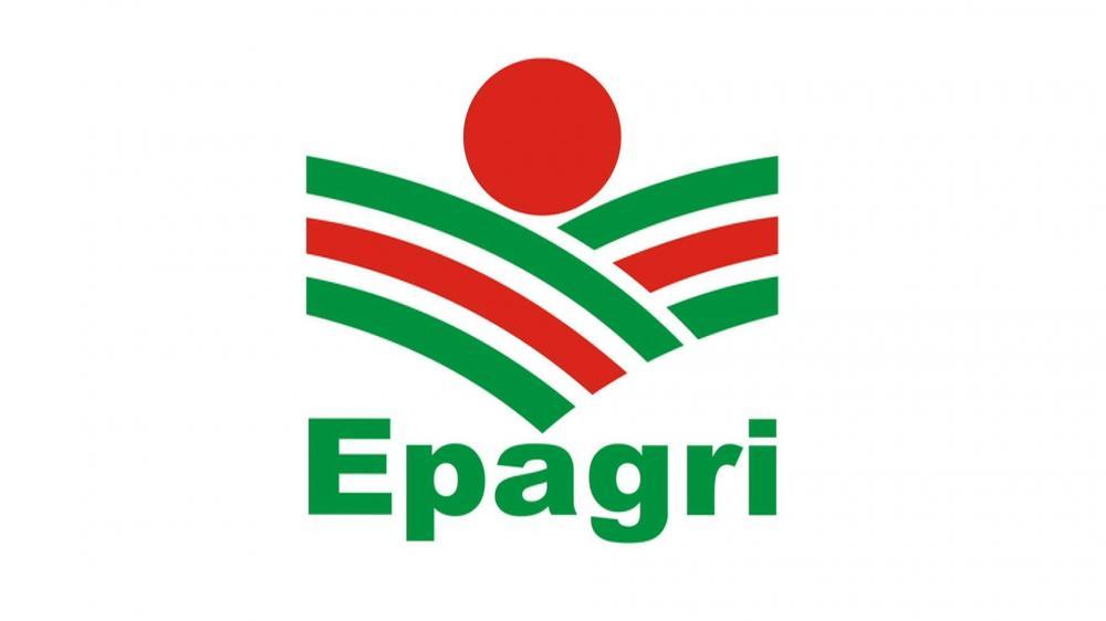 Epagri de Ituporanga promove Dia de Campo