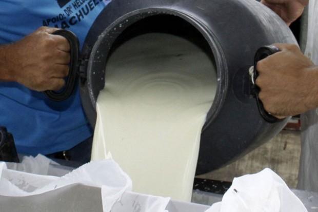 Epagri realiza conversa com produtores de leite em Ituporanga para buscar mais qualidade ao produto