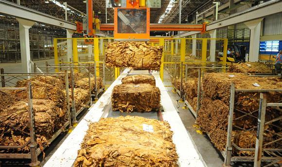 Iniciadas negociações para definir reajuste na tabela de preços do tabaco
