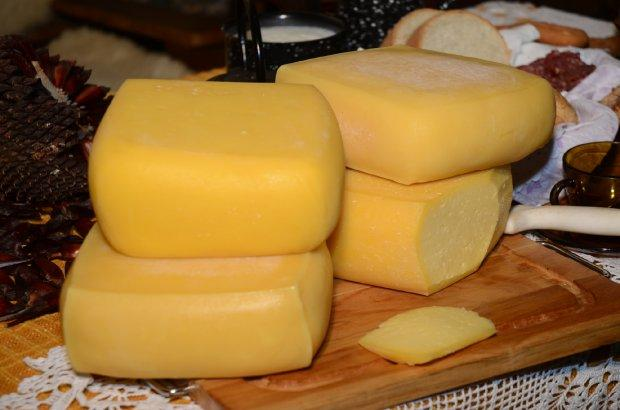 Produção de queijo artesanal no Alto Vale ganha incentivo com lei estadual