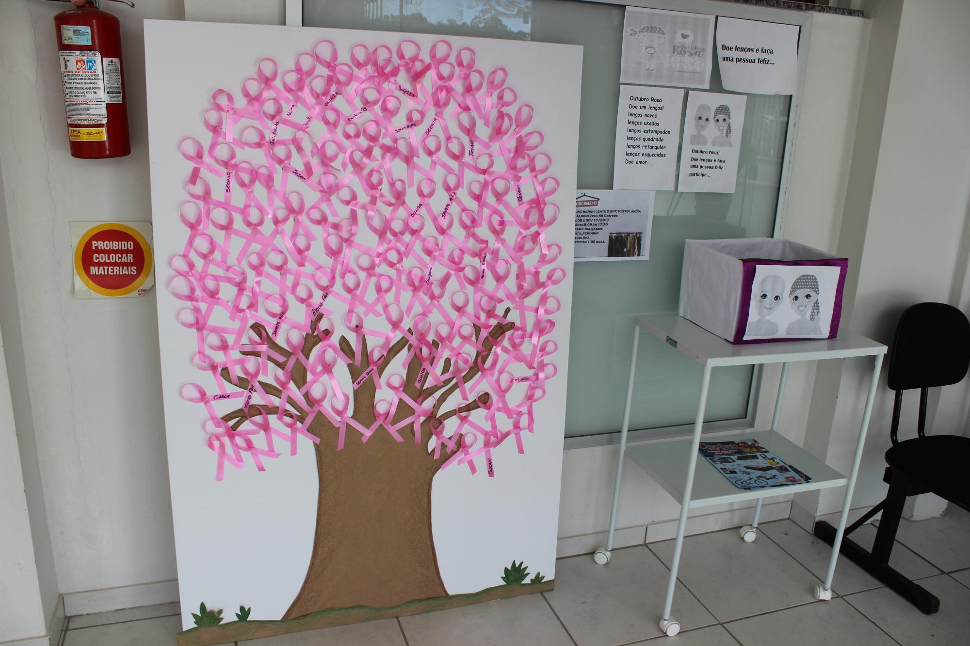 Secretaria de Saúde promove campanha para o Outubro Rosa, em Petrolândia