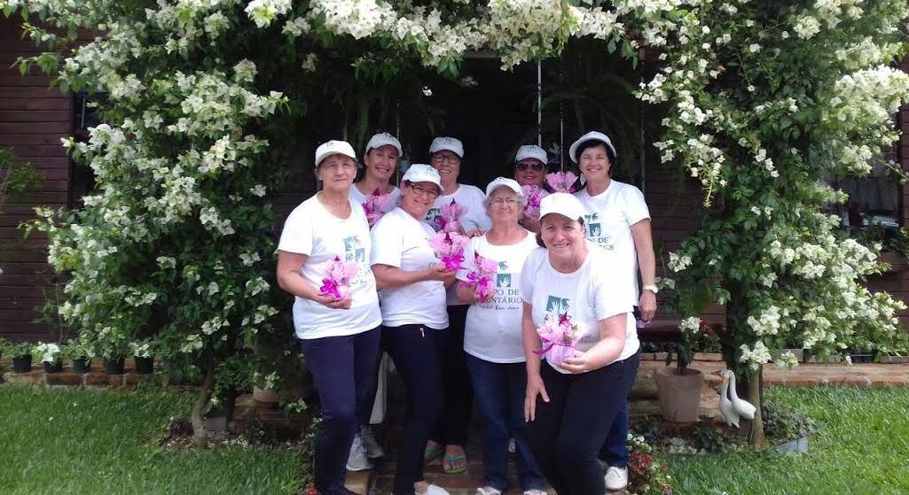 Vidalenses contribuem com mais de R$ 5,5 mil em Pedágio Solidário