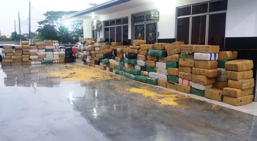 Operação conjunta em Itajaí resulta na maior apreensão de maconha da história de SC