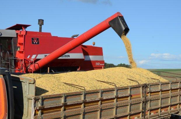 Santa Catarina exportou quantidade recorde de soja até maio, aponta Epagri/Cepa