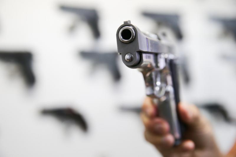 Santa Catarina tem 10 armas registradas por dia em 2019