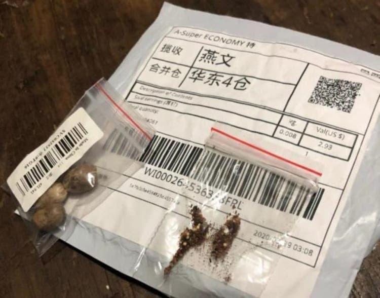 Sementes misteriosas da China possuem ácaro, fungos e bactérias, diz governo