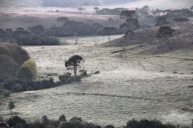 Serra de SC amanhece com temperaturas abaixo de zero e geada