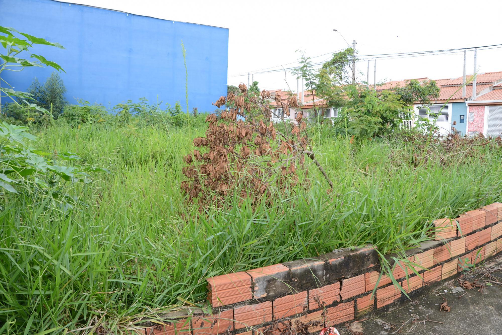 Vereador sugere punições a proprietários de imóveis e terrenos que se encontrem em estado de abandono em Ituporanga