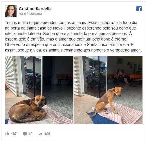 Comovida com a situação, Cristine Sardella compartilhou a história nas redes sociais: