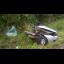 Mãe e três filhos de Ituporanga morrem em acidente na BR-470