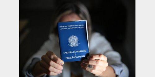 Santa Catarina tem mais de 4 mil vagas de emprego; veja por município