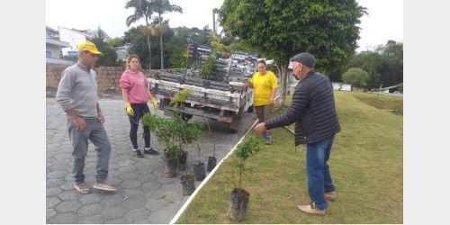 Trabalhos de limpeza e arborização são realizados em Ituporanga