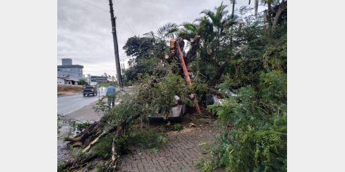 Vendaval causa estragos em Ituporanga
